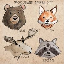 woodland animals color sample1
